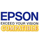 EPSON S020010 INK / INKJET Cartridge Black