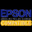 EPSON S020010 INK / INKJET Cartridge Black